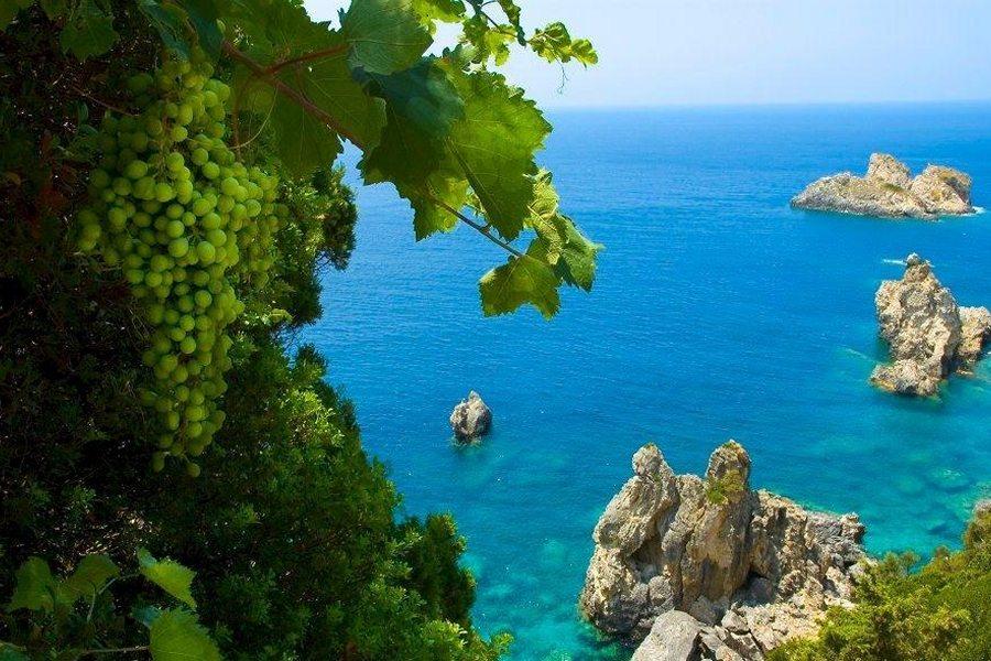 Обзорная экскурсия по острову Корфу (фото 28)