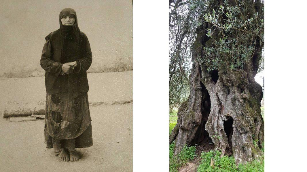 Монастыри Керкиры (фото 26)